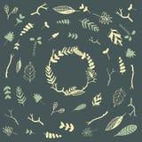 Vector o quadro floral e o grupo de elementos florais Imagens de Stock Royalty Free