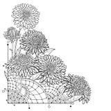 Vector o ramalhete de canto com a flor do áster do esboço, as folhas ornamentado e o botão no preto isolados no fundo branco Áste Ilustração do Vetor