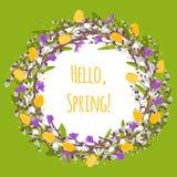 Vector o ramo do salgueiro com salgueiro de bichano, açafrão, snowdrops, tulipa Imagem de Stock Royalty Free