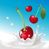 Vector o respingo do leite com cereja - ilustração Fotografia de Stock