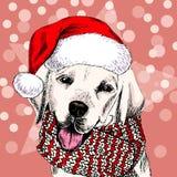 Vector o retrato do cão de labrador retriever que veste o chapéu e o lenço de Santa Isolado em árvores nevado e em chuveirinhos e ilustração do vetor