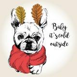 Vector o retrato do cão nas orelhas do lenço e da folha Ilustração tirada mão do cão Bebê ele frio de s fora ilustração royalty free