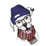 Vector o retrato tirado mão do cão acolhedor do inverno Pitbull que veste o lenço feito malha, vidros do andhipster do beanine Foto de Stock Royalty Free