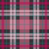 Vector o teste padrão escocês sem emenda da tartã em cor-de-rosa, roxo, azuis marinhos Fotografia de Stock Royalty Free