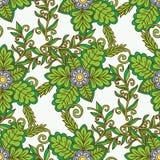 Vector o teste padrão floral no estilo da garatuja com flores e folhas Fotos de Stock Royalty Free