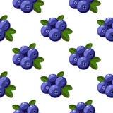 Vector o teste padrão sem emenda com as uvas-do-monte dos desenhos animados com as folhas verdes isoladas em um branco Textura pa Fotos de Stock Royalty Free
