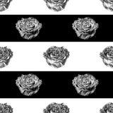 Vector o teste padrão sem emenda com flor cor-de-rosa e as listras pretas Fotografia de Stock