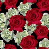 Vector o teste padrão sem emenda da flor da mola com plantas carnudas e as rosas vermelhas Fotografia de Stock