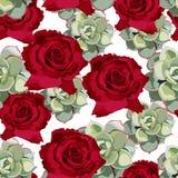 Vector o teste padrão sem emenda da flor da mola com plantas carnudas e as rosas vermelhas Projeto macio elegante Imagem de Stock