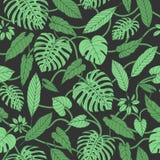 Vector o teste padrão sem emenda tropical com as folhas do monstera e da banana ilustração do vetor