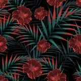 Vector o teste padrão tropical sem emenda, folha tropica vívida, com folhas de palmeira, hibiscus tropical florescem na flor ilustração stock