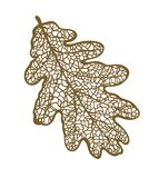 Vector oak leaf Stock Photography