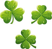 Vector object to the St. Patrick's Day Clover-EPS10 Stock Image