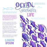 Vector ocean underwater life background. School of fish on white background. Various fish swim together. There is copy space for your text Royalty Free Stock Photos