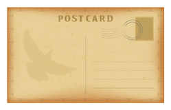 Vector old postcard with frame and dove. Grunge paper vintage post card. Stock Photography
