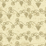 Vector old seamless pattern with climbing vine grapes. Royalty Free Stock Photos
