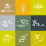 Vector olive oil icons and logo design elements Stock Image