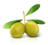 Vector olives , EPS 10 Stock Photos