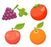 Vector op CMYK-wijze Tomaat, Apple, Sinaasappel, Druif vector illustratie