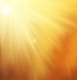 Vector orange background with sun rays. The  orange background with sun rays Royalty Free Stock Photos
