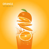 Vector orange fruit. Illustration EPS 10 Stock Photo