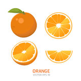 Vector orange fruit Royalty Free Stock Images
