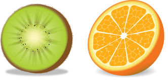 Vector Orange and Kiwi Stock Photos