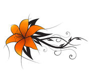 Vector orange lily Royalty Free Stock Photos