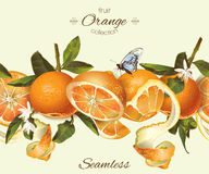 Vector orange seamless banner. Background design for juice, tea, natural cosmetics, bakery with orange filling, farmers marcet, grocery ,health care products royalty free stock photography