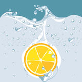 Vector of orange in water Royalty Free Stock Photos