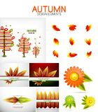 Vector orange and yellow autumn seasonal leaves, trees concepts. Mega collection of design elements Royalty Free Stock Image