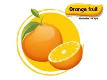 Vector Oranje die fruit op kleurenachtergrond wordt geïsoleerd, illustrator 10 eps Stock Afbeeldingen