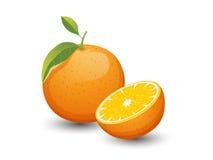 Vector Oranje die vruchten op witte achtergrond worden geïsoleerd Stock Fotografie