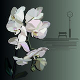 Vector orchid with a bench and street clock in the foreground stock illustration