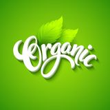 Vector organic background. Hand drawn lettering Stock Photos