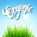 Vector organic background. Hand  drawn lettering Royalty Free Stock Image