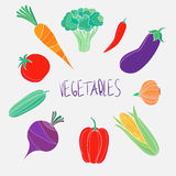 Vector organic food  colorful vegetables template. Vector organic food  colorful illustration with different vegetables in round frame Stock Image