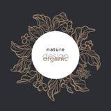 Vector organic symbol in circle. Nature floral bio design. Coffee tree. Graphic bouquet. Vector organic symbol in circle Nature floral design Art logo, bio card royalty free illustration