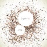 Vector Organic Tea. Vector natural abstract texture. Vector design elements. Organic frame background. Food texture. Vector spices Vector Illustration