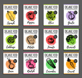 Vector organic vegetables cards set. Farm eco products tags collection. Hand sketched greens illustration.  Stock Image