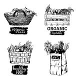 Vector organic vegetables images set. Farm products illustrations. Hand sketched baskets, box and bag with greens. Vector organic vegetables logotypes set. Farm Stock Photo