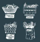 Vector organic vegetables images set. Farm products illustrations. Hand sketched baskets, box and bag with greens. Vector organic vegetables logotypes set. Farm Stock Photography
