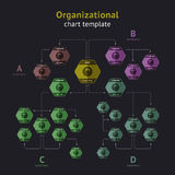Vector organization chart. Hierarchical diagram of official headed. Organizational chart template. Vector illustration Stock Photography