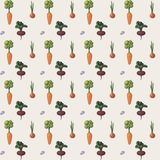 Vector ornament carrot onion beets Stock Photos