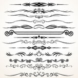 Vector Ornament Design Royalty Free Stock Image