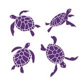Vector ornamental ocean turtles on the white background. Stock Photos