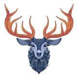 Vector Ornate Deer Horned Head Stock Images