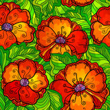 Vector ornate poppy flowers seamless pattern Stock Image