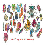 Vector Ornate Set of Stylized and Abstract Feathers. Stock Photography