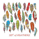 Vector Ornate Set of Stylized and Abstract Feathers. Stock Photos